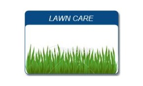 $420 for a 12-Month Lawn Treatment Package
