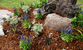 $70 for One Cubic Yard of Mulch