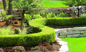 $299 for a Complete Design of Renovating or Installing a New Landscape with $500 Credit
