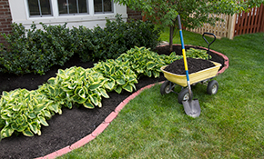 $250 for 4 Cubic Yards of Premium Mulch Delivered and Spread