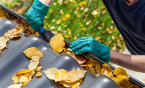 $315 for Gutter and Downspout Cleaning