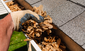$165 Gutter Cleaning for up to 1,500 Square Feet