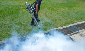 $125 for a General Pest Control Treatment