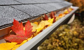 $135 for Gutter and Downspout Cleaning