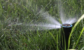 $3,000 for a 6-Zone Sprinkler System Installation, Including Design Consultation