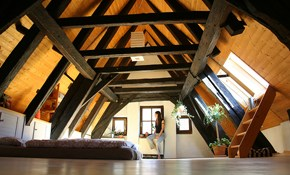 $49 for an Attic Inspection--Insulation and Ventilation Analysis Included
