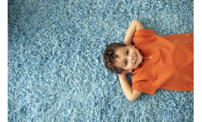 $99 for 3 Rooms PLUS a Hallway or Bathroom Carpet Cleaning!