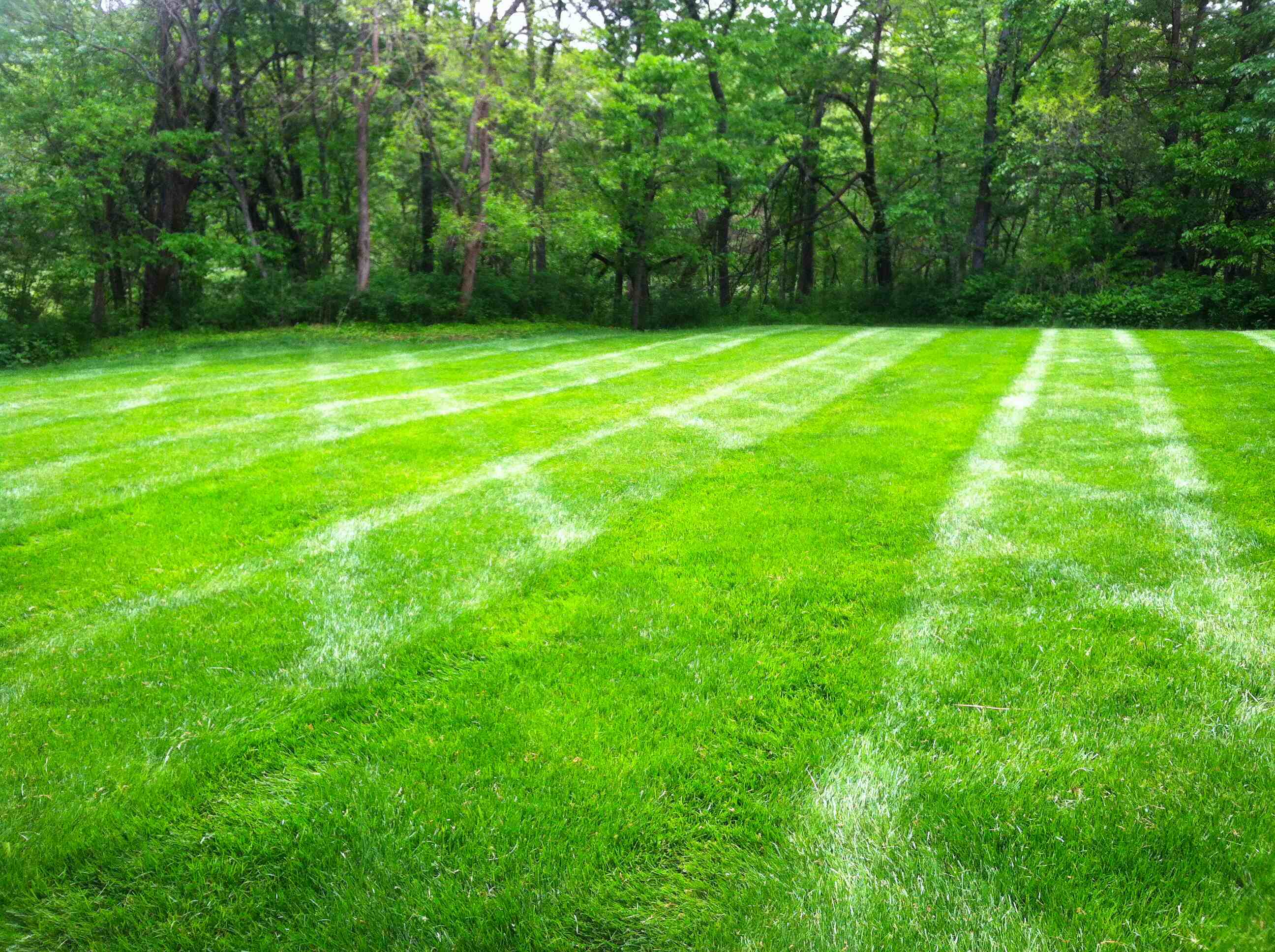 Whispering Hills Lawn Service Llc Reviews Lenexa Ks