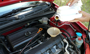 $34.95 for a Coolant Flush and Inspection