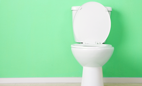 $49 for a Toilet Tune-Up and Home Plumbing Inspection