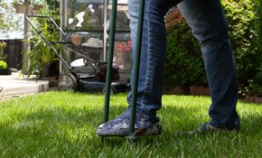 135 for onetime healthy lawn treatment and pest control - Lawn Treatment
