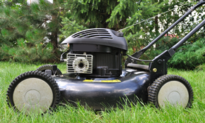 $80 for In-Store Lawn Mower or Snow Blower Tune-Up