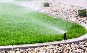 $180 Irrigation System Check