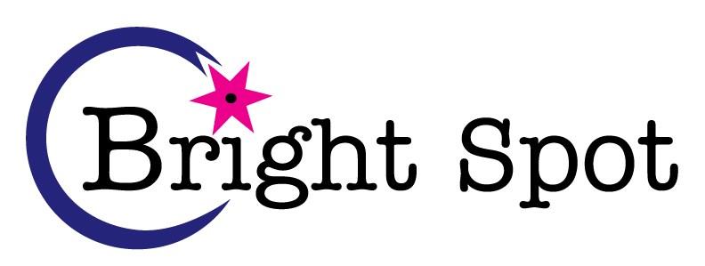 Bright Spot Painting logo
