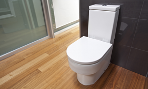 $699 for a New Toilet Installed
