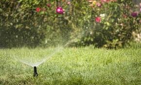 $99.00 Water Conservation Assesment