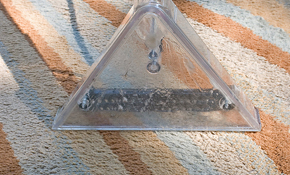 $145 for 5 Rooms of Carpet Cleaning