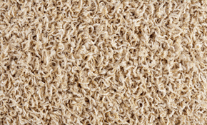 $198 for Whole House Carpet Cleaning Including Stairs