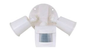$109 for a Motion Activated Security Light!