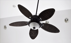 $100 for Ceiling Fan Installation!