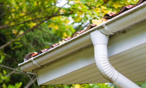 $179 for Gutter Cleaning and Roof Debris Removal - 150 Linear Feet