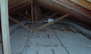 $39 for an Attic Inspection with Comprehensive Proposal