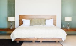 $200 K-9 Bed Bug Inspection