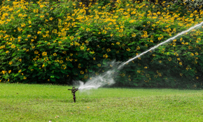 $3,250 for a 6-Zone Sprinkler System Installation, Including Design Consultation