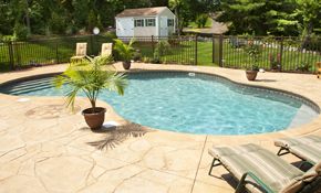 $115 for 1 Month of Pool Cleaning