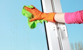 $90 for $100 Worth of Window Cleaning Services