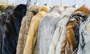 $25 for 2 Suits Dry Cleaned and Pressed Including Pick-Up and Delivery