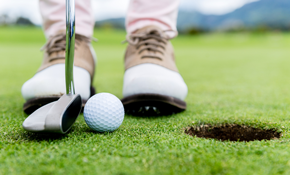 $5,400.00 for a 300 Square Foot Synthetic Premium Nylon Practice Putting Green – Designed and Installation