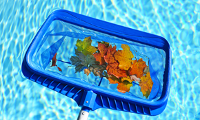 $25 for One Month of Full Service Pool Cleaning
