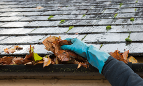 $110 for Gutter Cleaning, Roof Debris Removal, and a Gutter Tune-Up