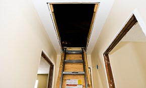 $29 for an Attic Door Insulation