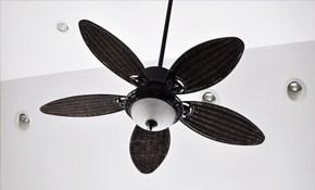 $67.50 Ceiling Fan Installation