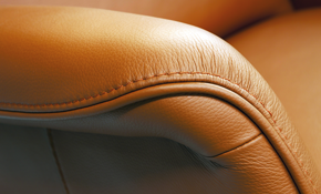 $250 for Leather Upholstery Cleaning and Conditioning
