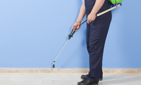 $385 Quarterly Pest Control Service with Initial Start Service
