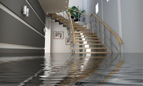 $299 for $500 Worth of Basement Waterproofing, Plus Free Inspection Report