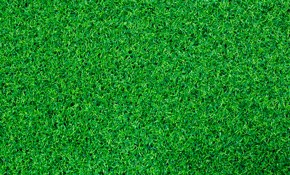 $4,050 for up to 500 Square Feet of Lush Artificial Bermuda Grass