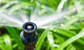 $95 for Irrigation System Audit