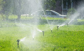 $79 Comprehensive Sprinkler Tune-Up