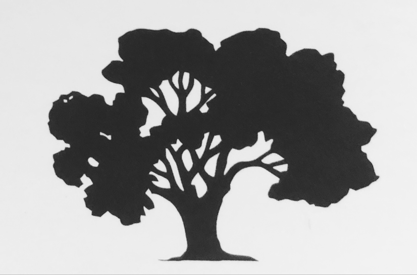Magnolia Landscape & Concrete, Inc. logo