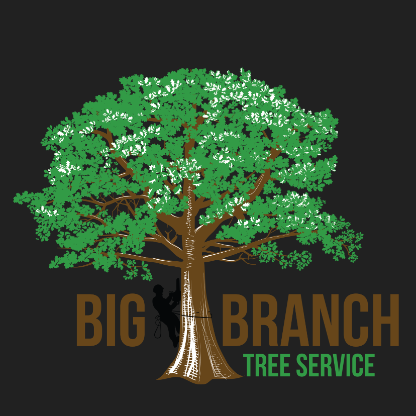 Big Branch Tree Service logo