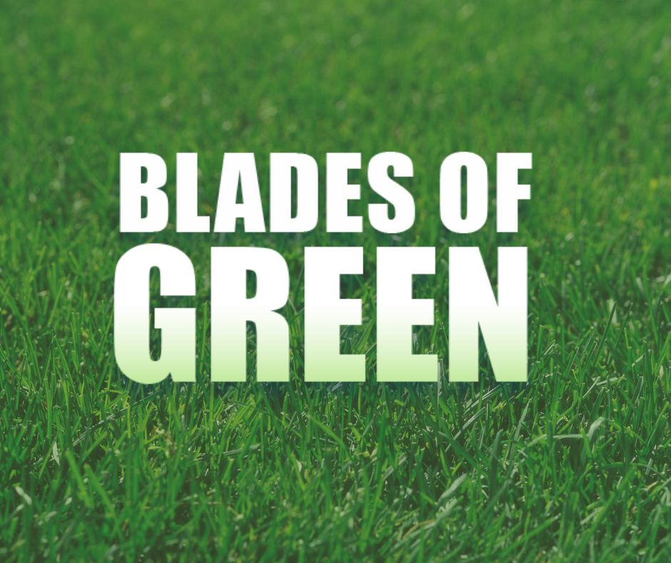 Image result for blades of green logo