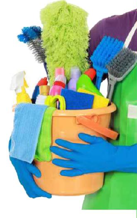 Healthy Homes House Cleaning, LLC logo