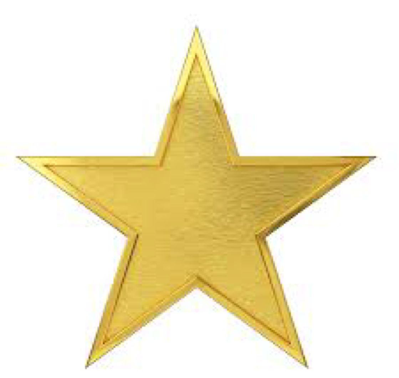 Gold Star Home Improvement logo