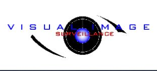 Visual Image Surveillance Inc logo