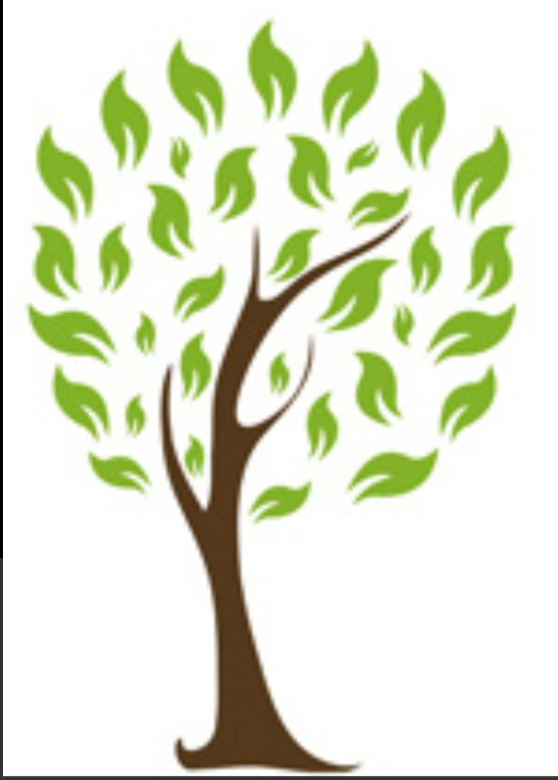 J&M Tree Service and Home Improvements, LLC logo