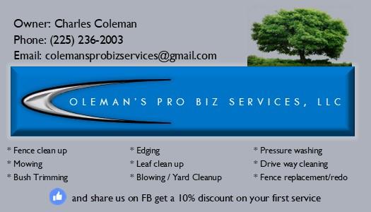 Coleman pro biz service  logo